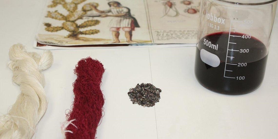 La Real Fábrica de Tapices colabora en la protección del único tinte con Denominación de Origen Protegida